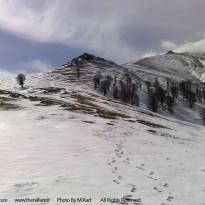 ارتفاعات ماسوله – فومن